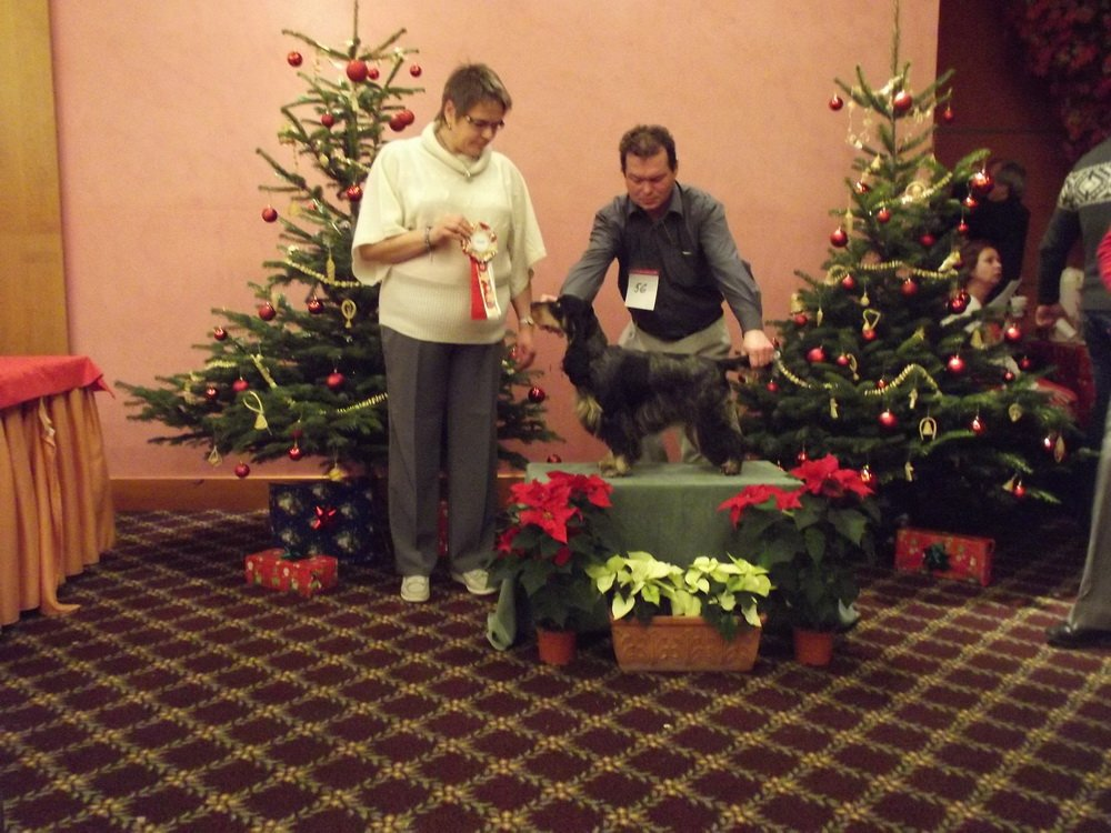 Advent Show ECC CZ 2011