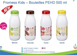 uht milk 500ml pet banana.jpg