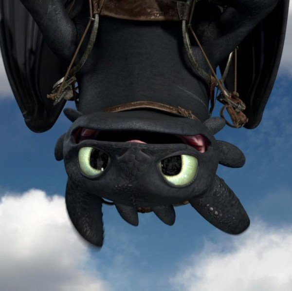 gift_of_the_night_fury_screencap___toothless_by_sdk2k9-d5dsh8c.jpg